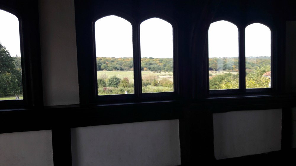View from Queen Elizabeth's Hunting Lodge, Epping Forest